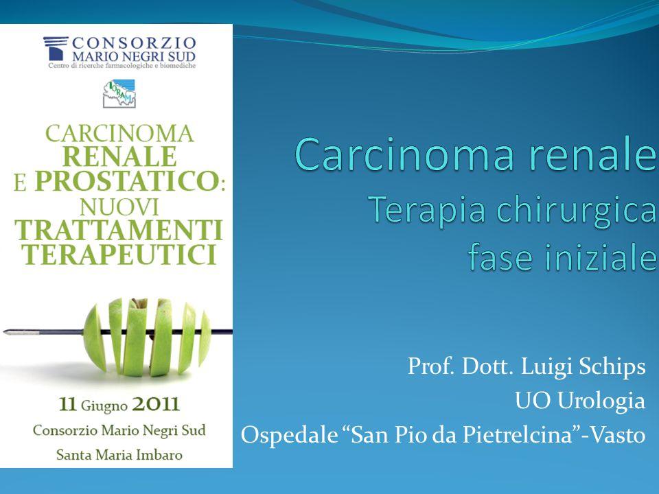 CHIRURGIA unica terapia curativa per i pazienti con carcinoma renale (RCC) localizzato Ljungberg B, Eur Urol 2010 11/06/2011 CARCINOMA RENALE E PROSTATICO: NUOVI TRATTAMENTI TERAPEUTICI
