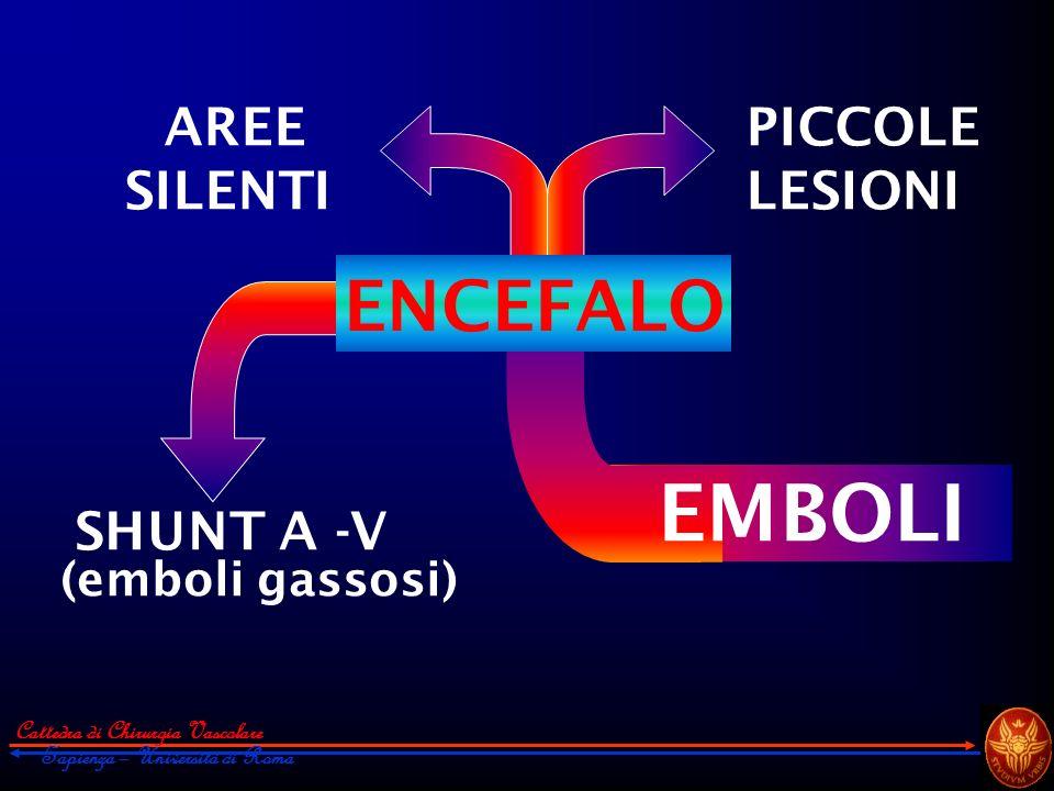 SHUNT A -V (emboli gassosi) AREE SILENTI PICCOLE LESIONI EMBOLI ENCEFALO Cattedra di Chirurgia Vascolare Sapienza – Università di Roma