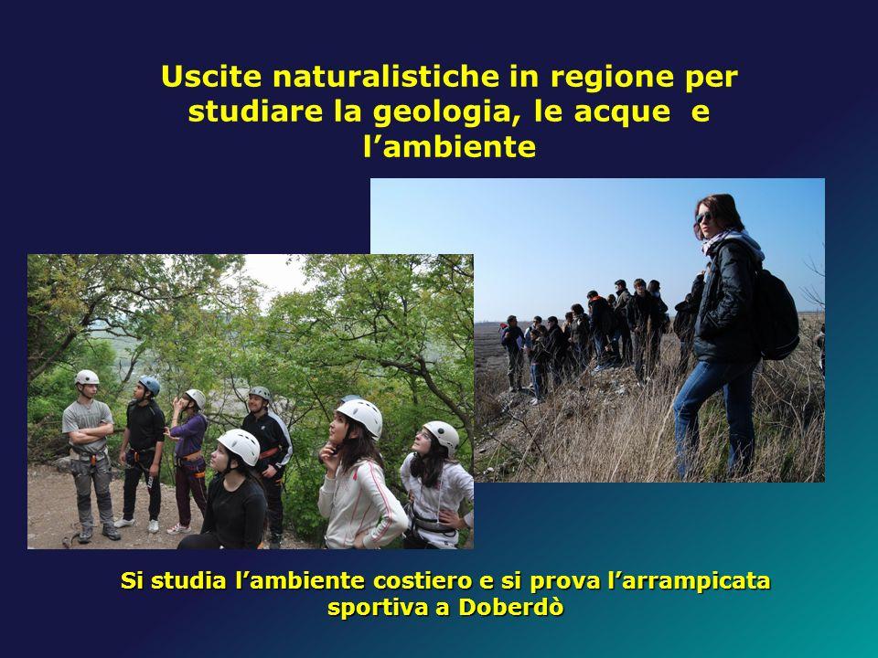 Uscite naturalistiche in regione per studiare la geologia, le acque e lambiente Si studia lambiente costiero e si prova larrampicata sportiva a Doberd
