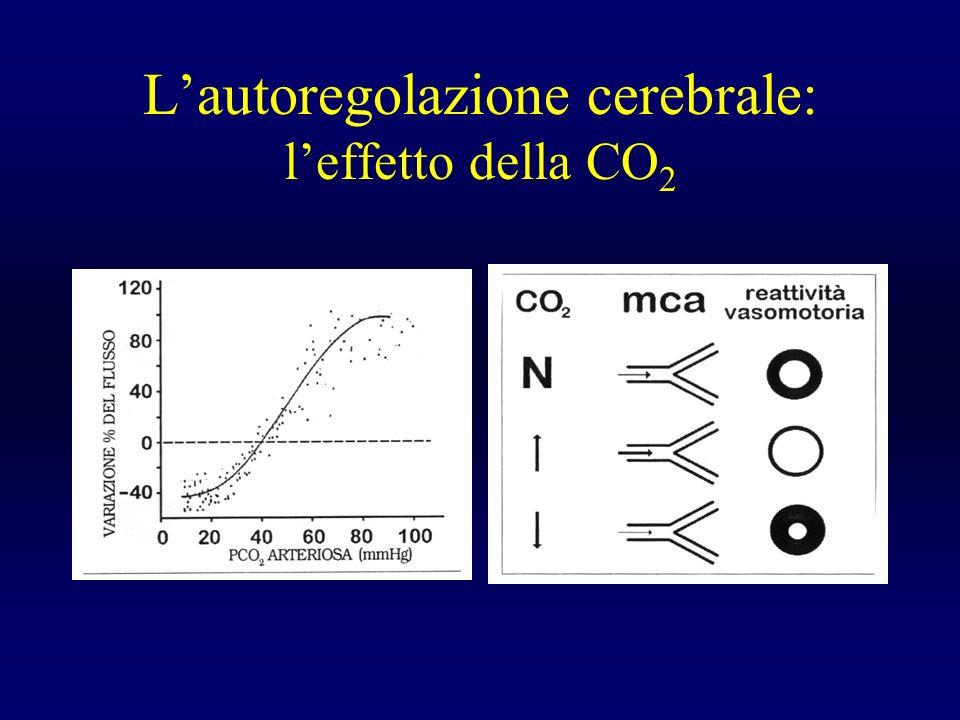 Lautoregolazione cerebrale: leffetto della CO 2