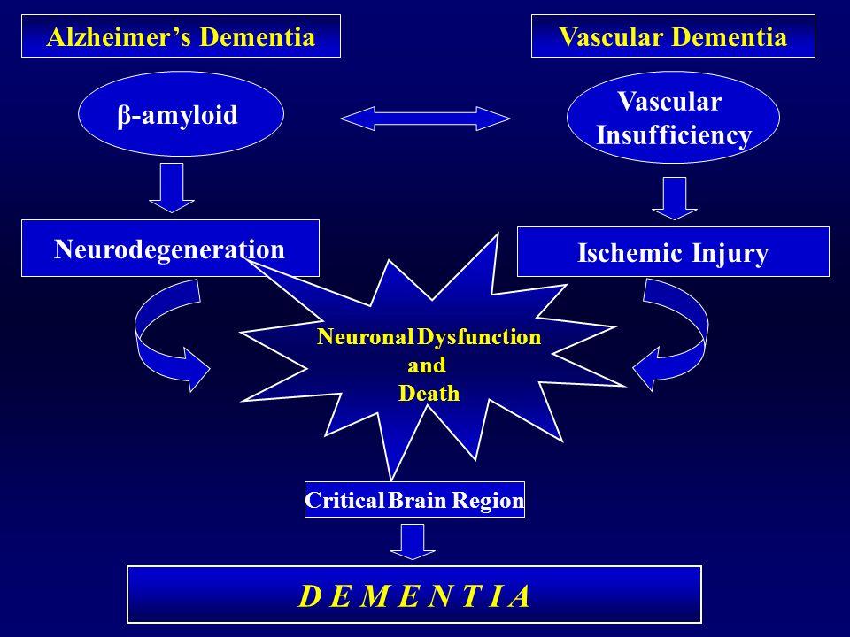 β-amyloid Vascular Insufficiency Alzheimers DementiaVascular Dementia Neurodegeneration Ischemic Injury Neuronal Dysfunction and Death Critical Brain