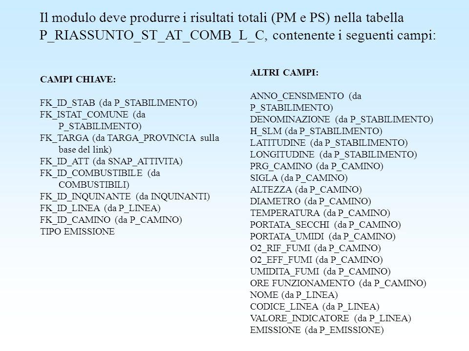 Il modulo deve produrre i risultati totali (PM e PS) nella tabella P_RIASSUNTO_ST_AT_COMB_L_C, contenente i seguenti campi: CAMPI CHIAVE: FK_ID_STAB (
