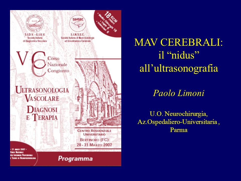 MAV CEREBRALI: il nidus allultrasonografia Paolo Limoni U.O. Neurochirurgia, Az.Ospedaliero-Universitaria, Parma