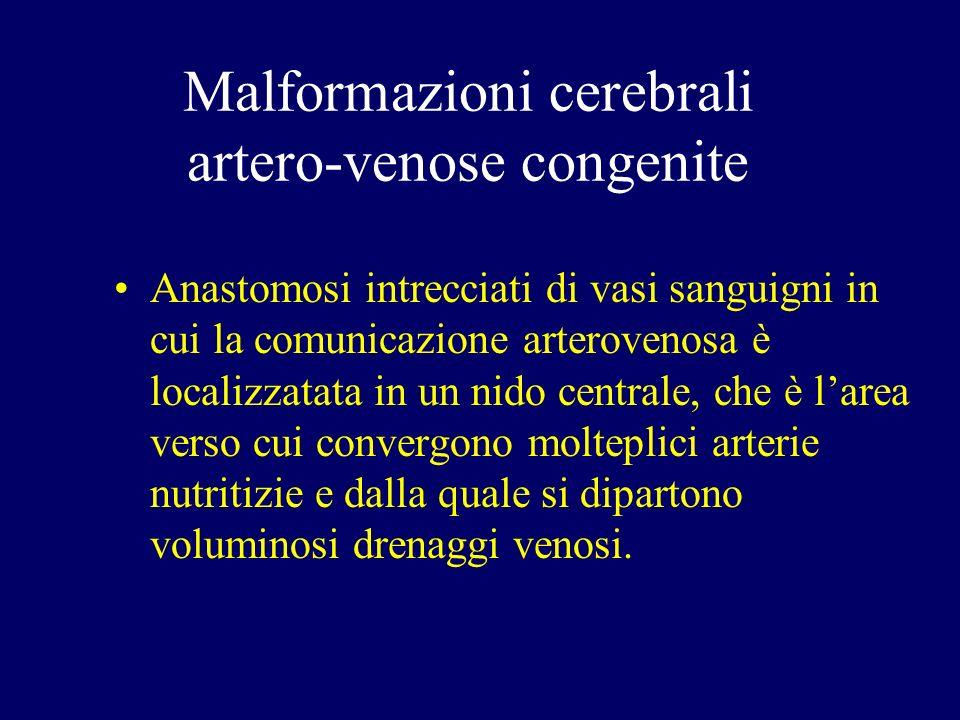 Anastomosi intrecciati di vasi sanguigni in cui la comunicazione arterovenosa è localizzatata in un nido centrale, che è larea verso cui convergono mo