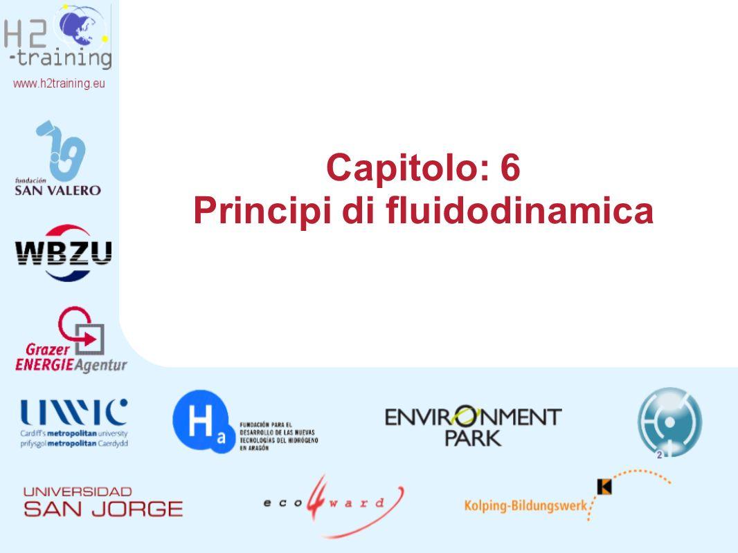 Capitolo: 6 Principi di fluidodinamica