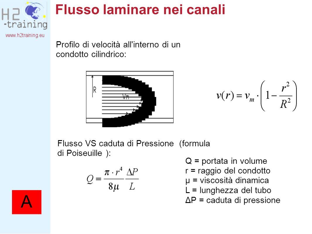 Flusso laminare nei canali Profilo di velocità all'interno di un condotto cilindrico: Flusso VS caduta di Pressione (formula di Poiseuille ): Q = port