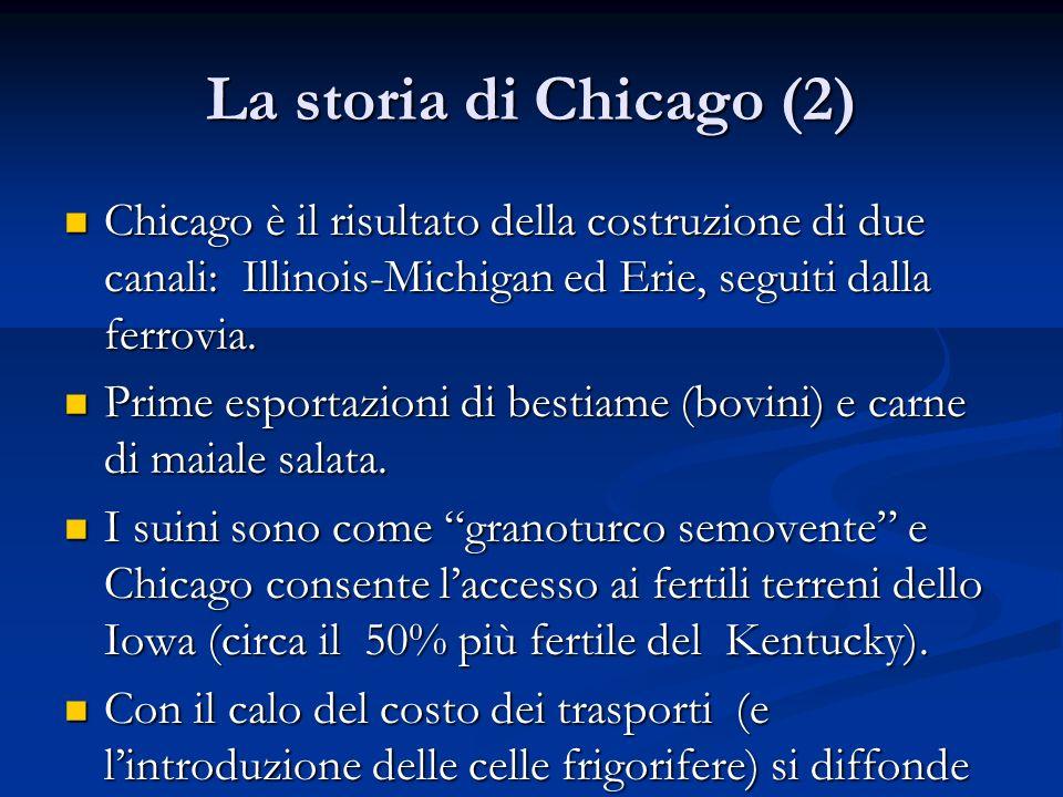 La storia di Chicago (2) Chicago è il risultato della costruzione di due canali: Illinois-Michigan ed Erie, seguiti dalla ferrovia. Chicago è il risul