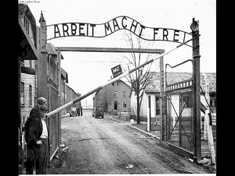 La campagna di denigrazione degli ebrei,tendente a gettare su di loro il discredito e a metterli in cattiva luce, fu diretta e controllata da Hitler e da Mussolini con una serie di provvedimenti che colpirono duramente la comunità ebraica.