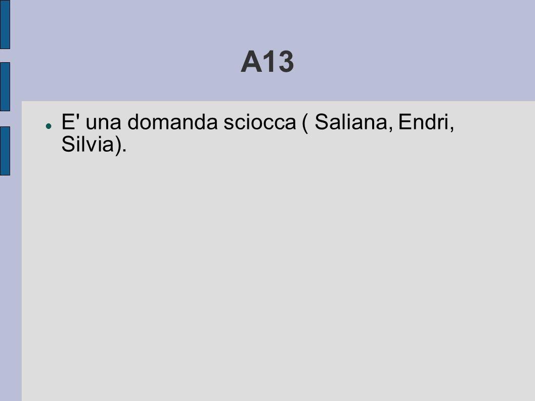 A13 E' una domanda sciocca ( Saliana, Endri, Silvia).