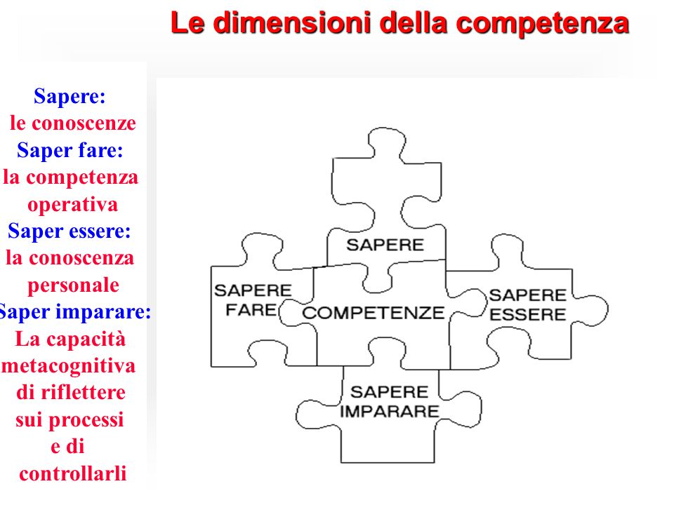 Le dimensioni della competenza Sapere: le conoscenze Saper fare: la competenza operativa Saper essere: la conoscenza personale Saper imparare: La capa