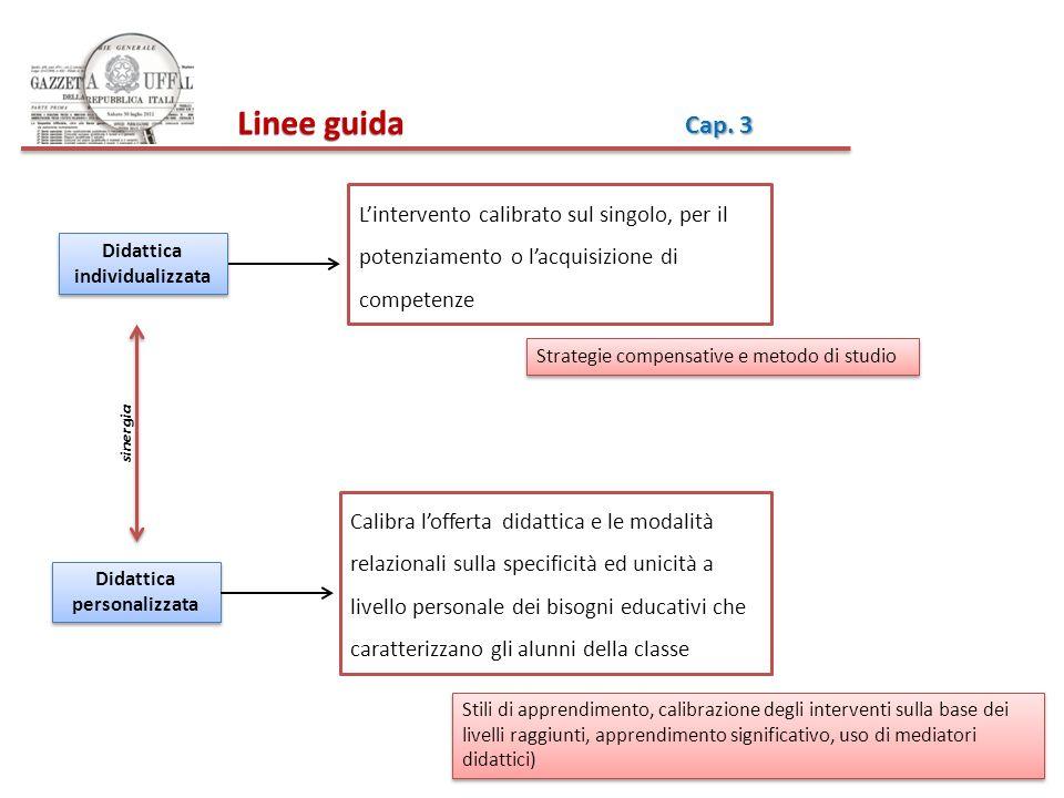 Linee guida Linee guida Cap. 3 Lintervento calibrato sul singolo, per il potenziamento o lacquisizione di competenze Didattica individualizzata Calibr