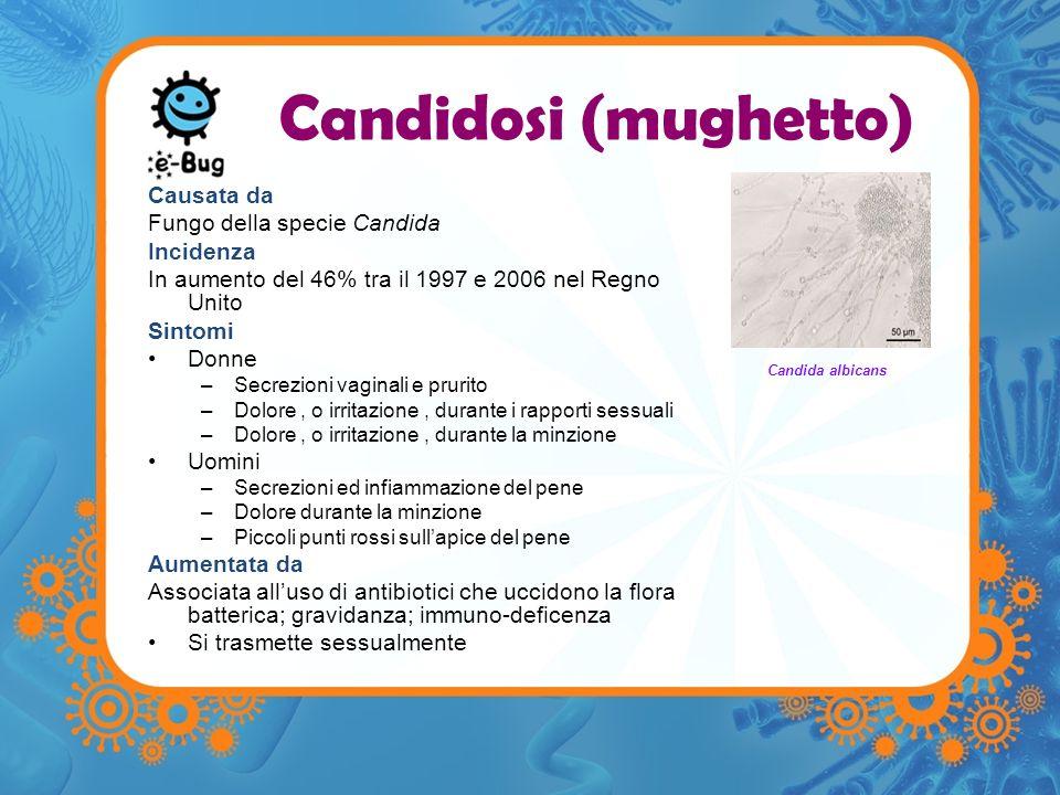 Candidosi (mughetto) Causata da Fungo della specie Candida Incidenza In aumento del 46% tra il 1997 e 2006 nel Regno Unito Sintomi Donne –Secrezioni v