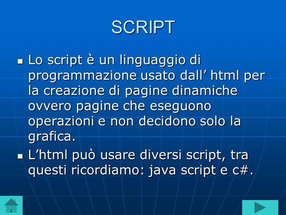 SCRIPT Lo script è un linguaggio di programmazione usato dall html per la creazione di pagine dinamiche ovvero pagine che eseguono operazioni e non decidono solo la grafica.