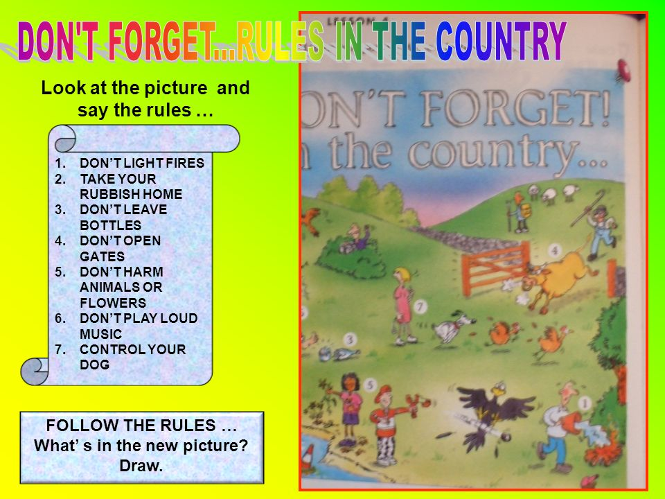 Look at the picture and say the rules … 1.DONT LIGHT FIRES 2.TAKE YOUR RUBBISH HOME 3.DONT LEAVE BOTTLES 4.DONT OPEN GATES 5.DONT HARM ANIMALS OR FLOWERS 6.DONT PLAY LOUD MUSIC 7.CONTROL YOUR DOG FOLLOW THE RULES … What s in the new picture.