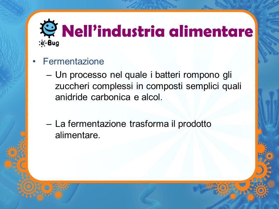 Fermentazione –Un processo nel quale i batteri rompono gli zuccheri complessi in composti semplici quali anidride carbonica e alcol. –La fermentazione