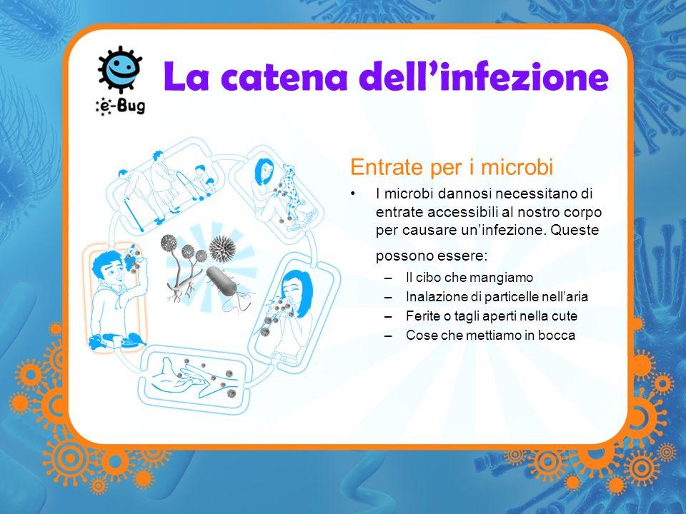 La catena dellinfezione Entrate per i microbi I microbi dannosi necessitano di entrate accessibili al nostro corpo per causare uninfezione. Queste pos