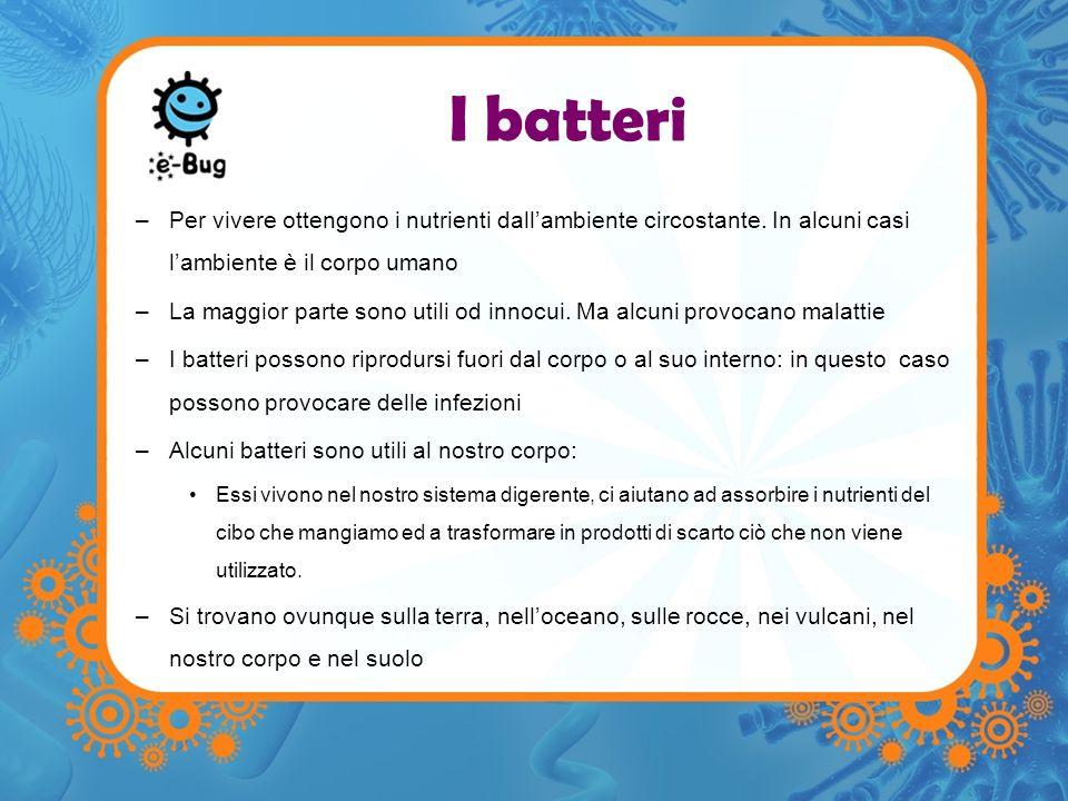 Batteri –per vivere ottengono i nutrienti dallambiente circostante