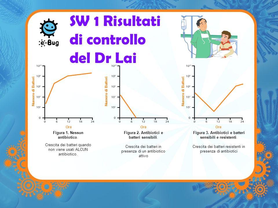 SW 1 Risultati di controllo del Dr Lai Ore Numero di Batteri Ore Numero di Batteri Figura 1. Nessun antibiotico. Crescita dei batteri quando non viene