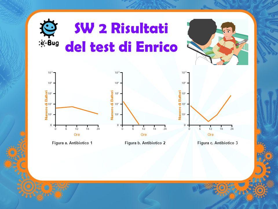SW 2 Risultati del test di Enrico Figura a. Antibiotico 1Figura b. Antibiotico 2Figura c. Antibiotico 3 Ore Numero di Batteri