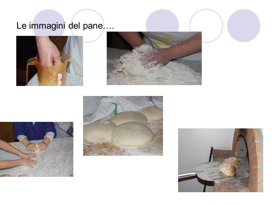 Le immagini del pane….