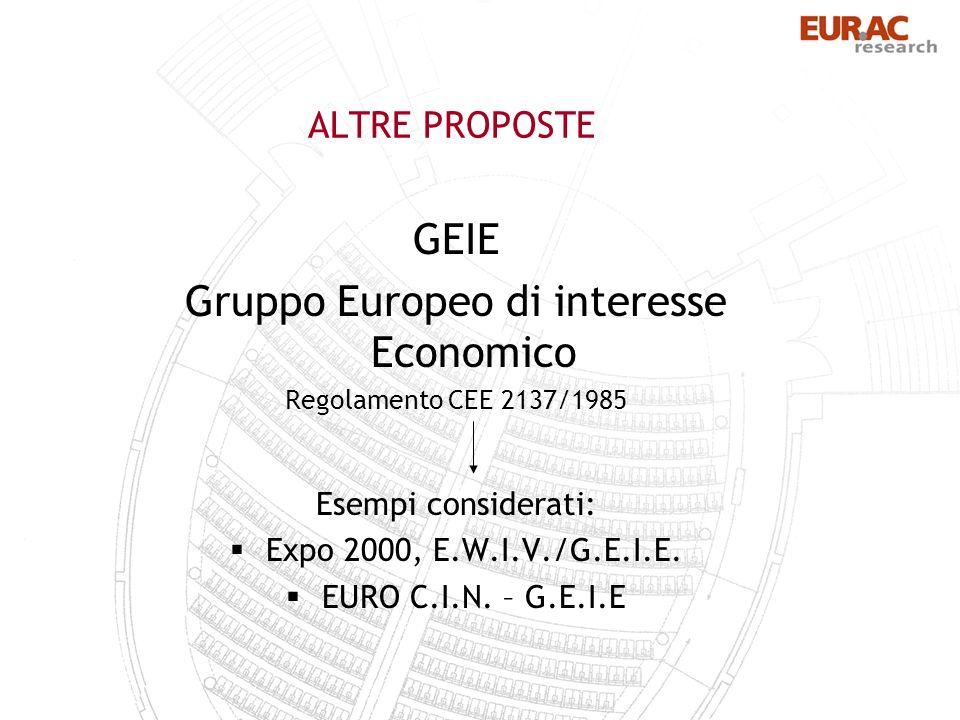 ALTRE PROPOSTE GEIE Gruppo Europeo di interesse Economico Regolamento CEE 2137/1985 Esempi considerati: Expo 2000, E.W.I.V./G.E.I.E.
