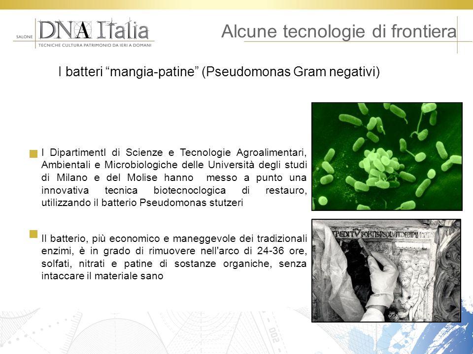Alcune tecnologie di frontiera I batteri mangia-patine (Pseudomonas Gram negativi) I DipartimentI di Scienze e Tecnologie Agroalimentari, Ambientali e