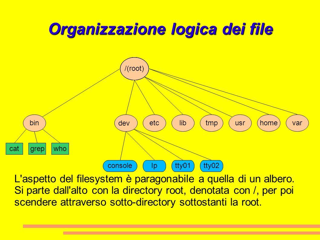 Organizzazione logica dei file home /(root) usrvartmplibetcbin catgrepwho consoleIptty01tty02 dev L'aspetto del filesystem è paragonabile a quella di