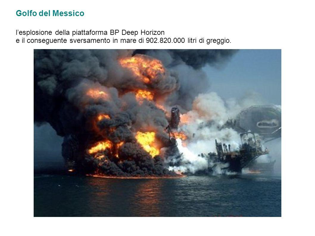 Golfo del Messico lesplosione della piattaforma BP Deep Horizon e il conseguente sversamento in mare di 902.820.000 litri di greggio.