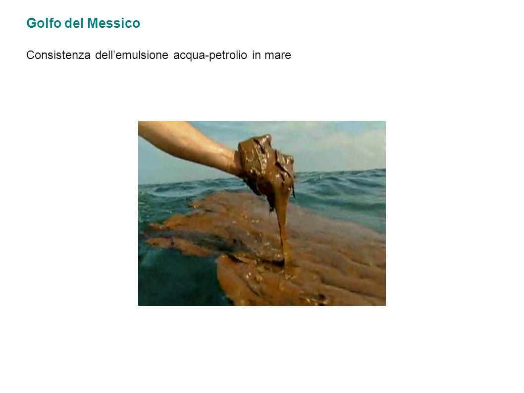 Golfo del Messico Consistenza dellemulsione acqua-petrolio in mare