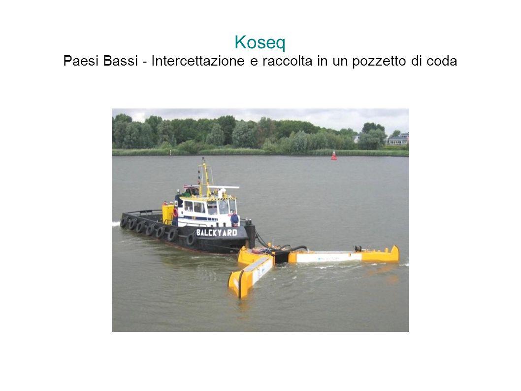Koseq Paesi Bassi - Intercettazione e raccolta in un pozzetto di coda
