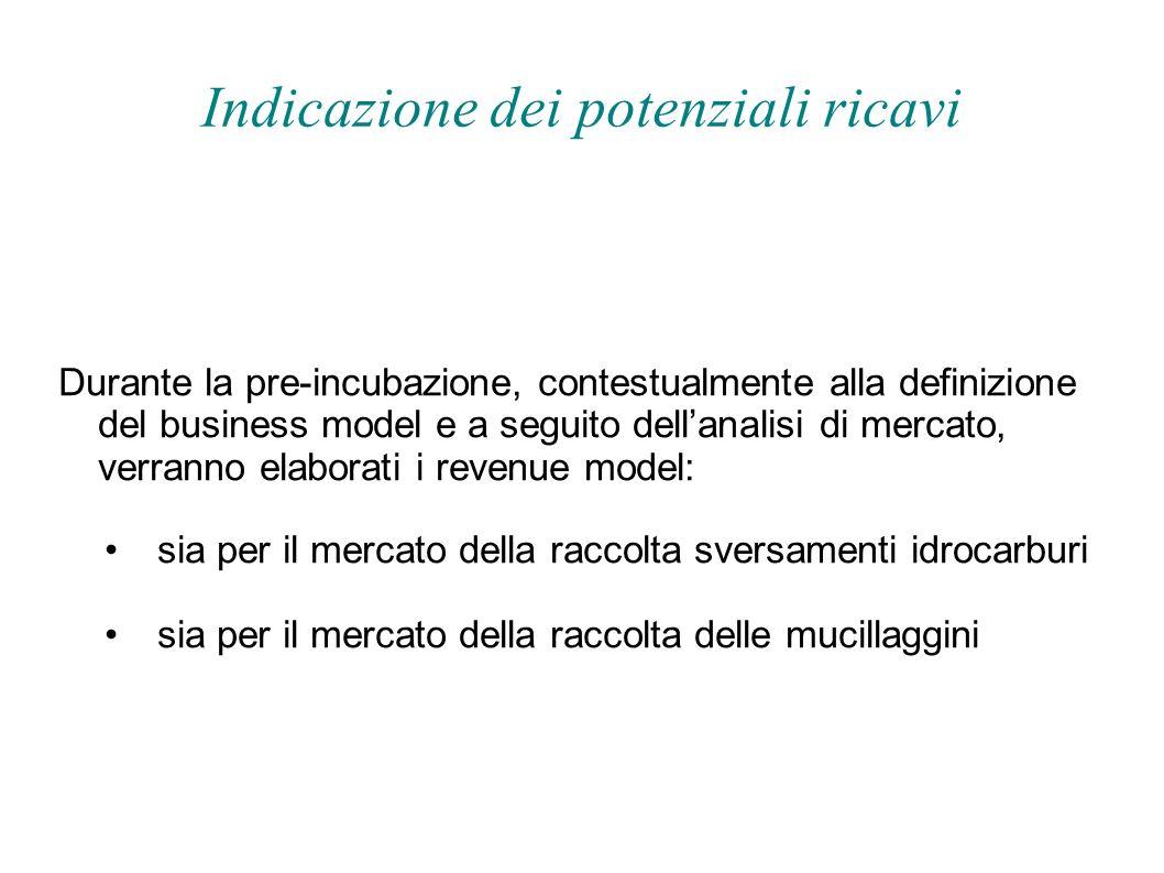 Indicazione dei potenziali ricavi Durante la pre-incubazione, contestualmente alla definizione del business model e a seguito dellanalisi di mercato,
