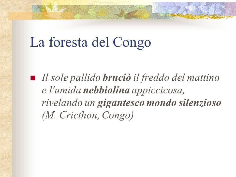 La foresta del Congo Il sole pallido bruciò il freddo del mattino e l'umida nebbiolina appiccicosa, rivelando un gigantesco mondo silenzioso (M. Crict