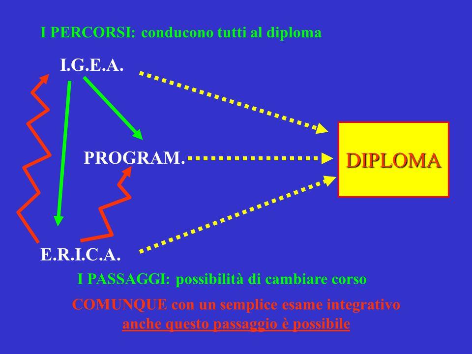 I PERCORSI: conducono tutti al diploma I.G.E.A. PROGRAM.