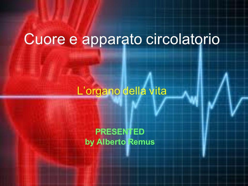 Cuore e apparato circolatorio Lorgano della vita PRESENTED by Alberto Remus