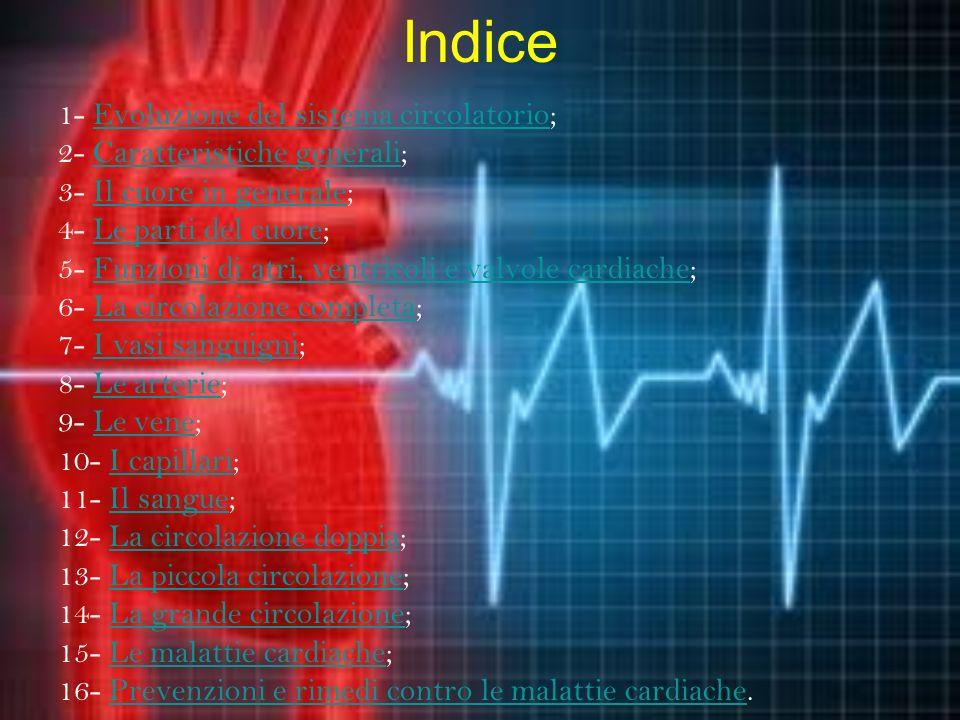 Indice 1- Evoluzione del sistema circolatorio;Evoluzione del sistema circolatorio 2- Caratteristiche generali;Caratteristiche generali 3- Il cuore in