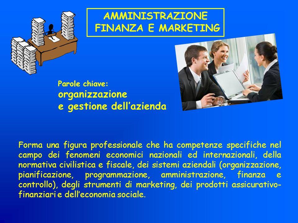 AMMINISTRAZIONE FINANZA E MARKETING Forma una figura professionale che ha competenze specifiche nel campo dei fenomeni economici nazionali ed internaz