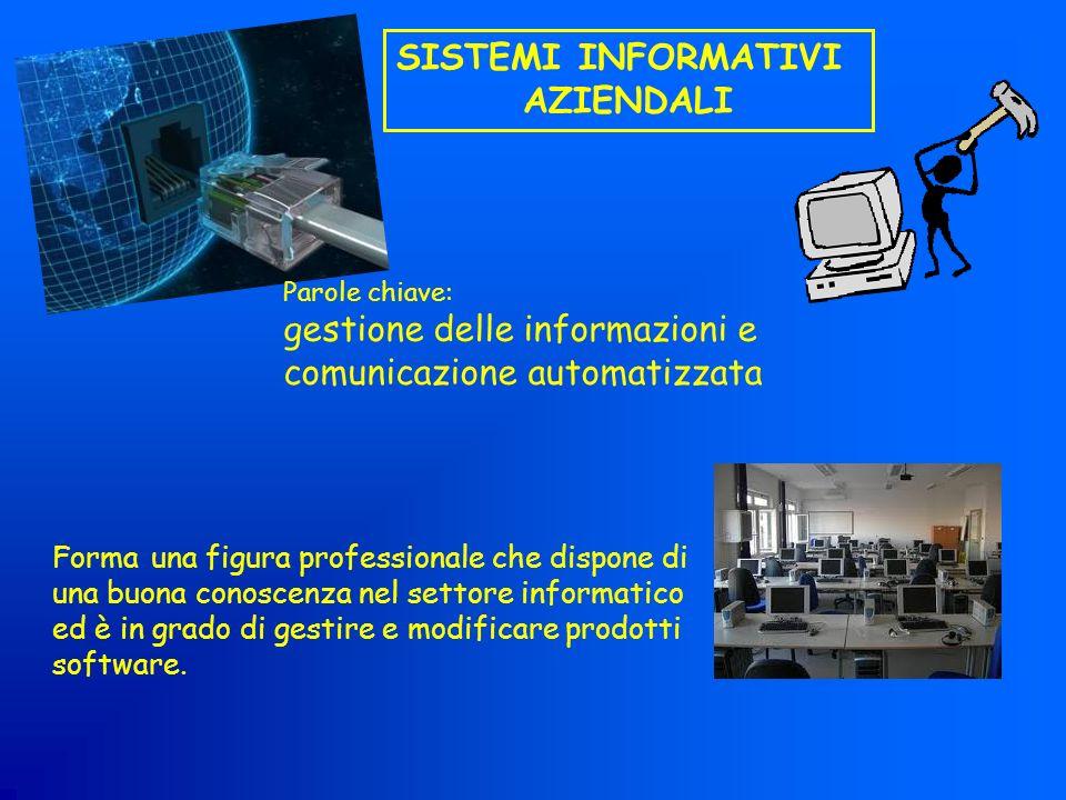 Forma una figura professionale che dispone di una buona conoscenza nel settore informatico ed è in grado di gestire e modificare prodotti software. SI