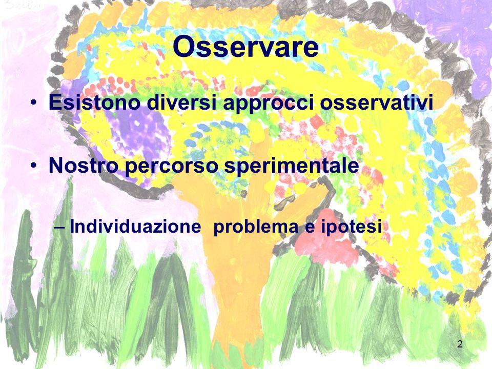 2 Osservare Esistono diversi approcci osservativi Nostro percorso sperimentale –Individuazione problema e ipotesi