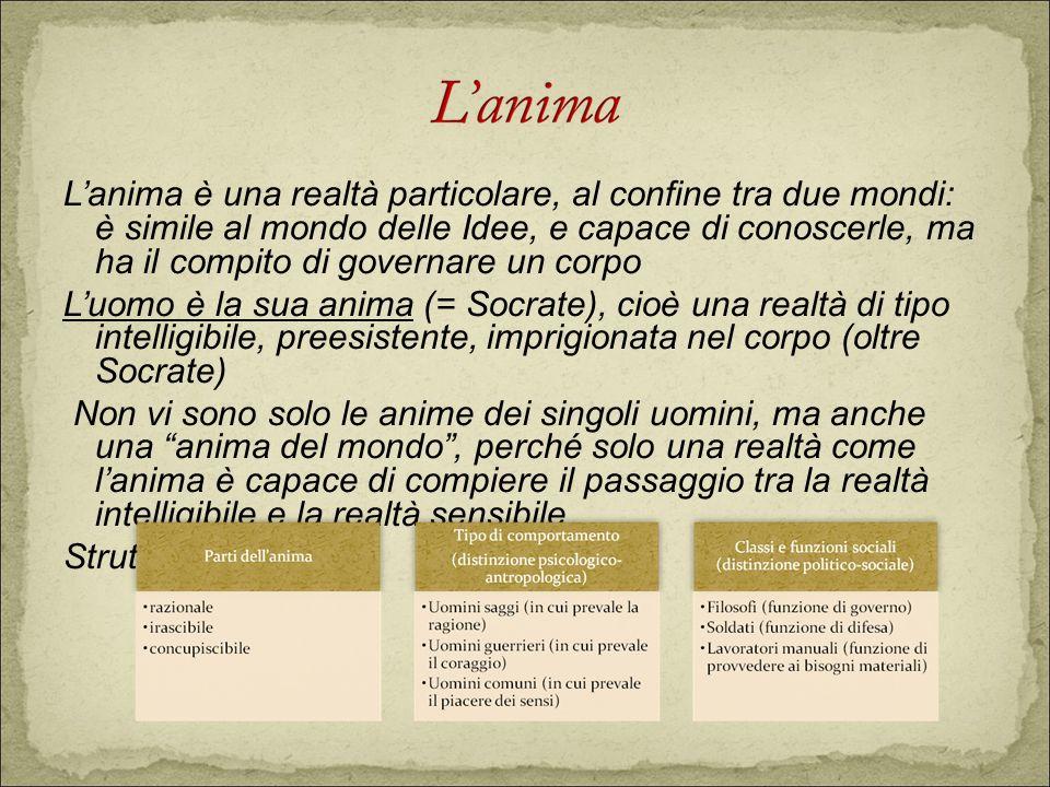 Lanima è una realtà particolare, al confine tra due mondi: è simile al mondo delle Idee, e capace di conoscerle, ma ha il compito di governare un corp