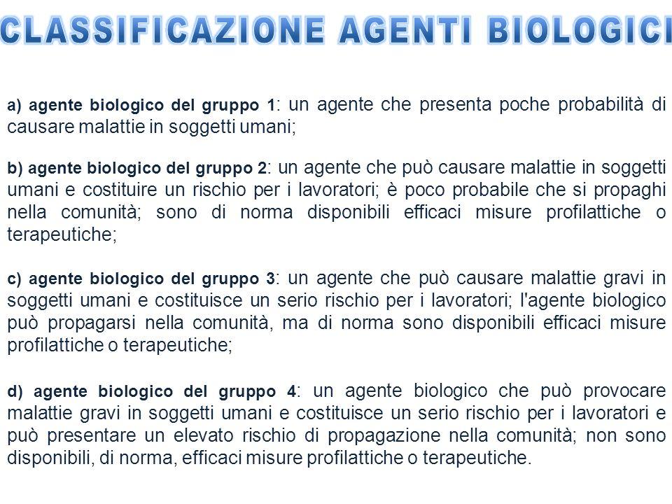 a) agente biologico del gruppo 1 : un agente che presenta poche probabilità di causare malattie in soggetti umani; b) agente biologico del gruppo 2 :