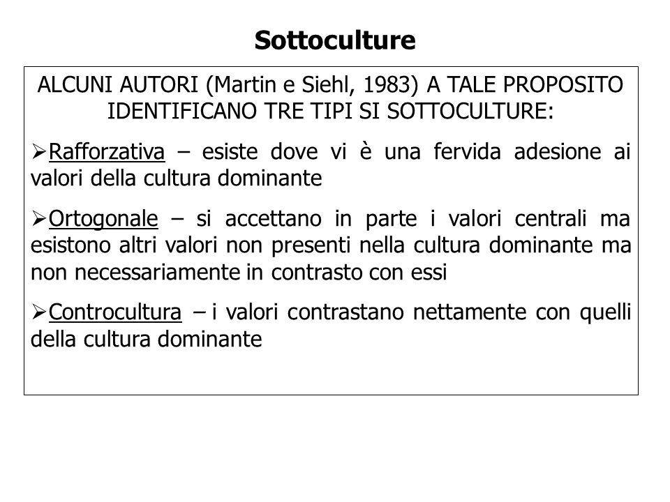 Sottoculture ALCUNI AUTORI (Martin e Siehl, 1983) A TALE PROPOSITO IDENTIFICANO TRE TIPI SI SOTTOCULTURE: Rafforzativa – esiste dove vi è una fervida