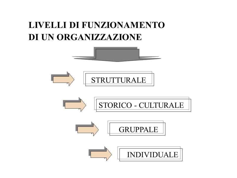 LIVELLI DI FUNZIONAMENTO DI UN ORGANIZZAZIONE STRUTTURALE STORICO - CULTURALE GRUPPALE INDIVIDUALE