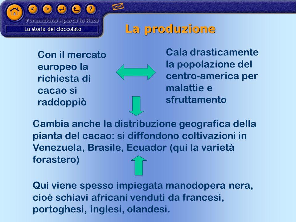 La storia del cioccolato La produzione Con il mercato europeo la richiesta di cacao si raddoppiò Cala drasticamente la popolazione del centro-america