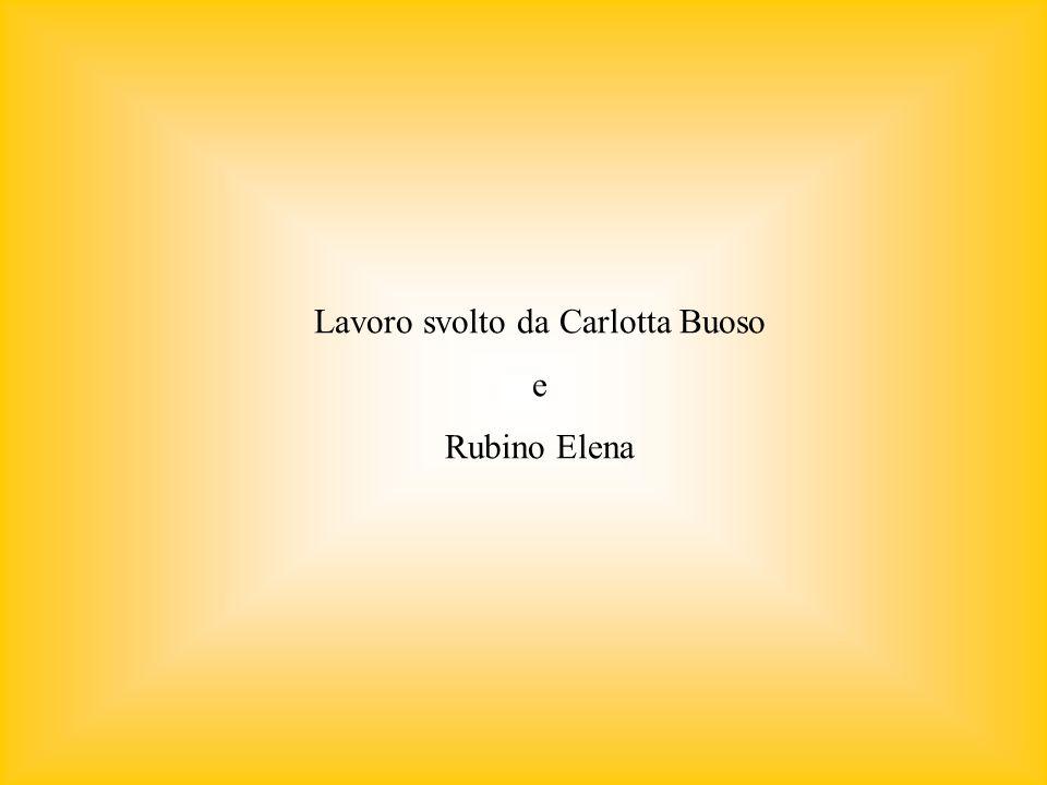 Lavoro svolto da Carlotta Buoso e Rubino Elena