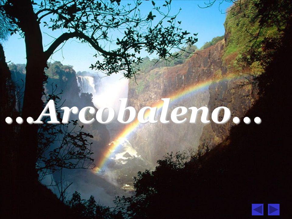 ...Arcobaleno...