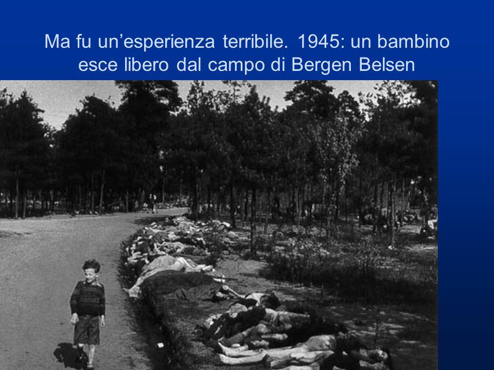 Ma fu unesperienza terribile. 1945: un bambino esce libero dal campo di Bergen Belsen camminando tra centinaia di cadaveri