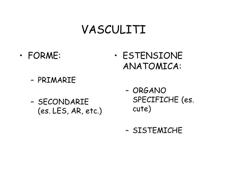 VASCULITI FORME: –PRIMARIE –SECONDARIE (es. LES, AR, etc.) ESTENSIONE ANATOMICA: –ORGANO SPECIFICHE (es. cute) –SISTEMICHE