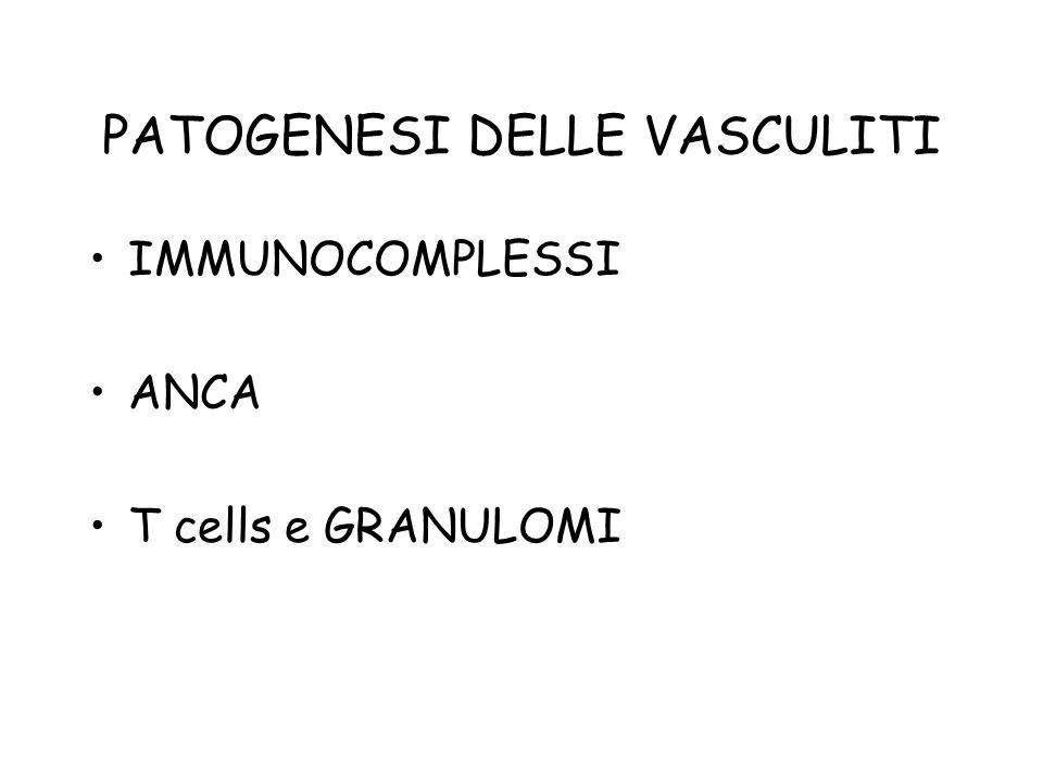 PATOGENESI DELLE VASCULITI IMMUNOCOMPLESSI ANCA T cells e GRANULOMI