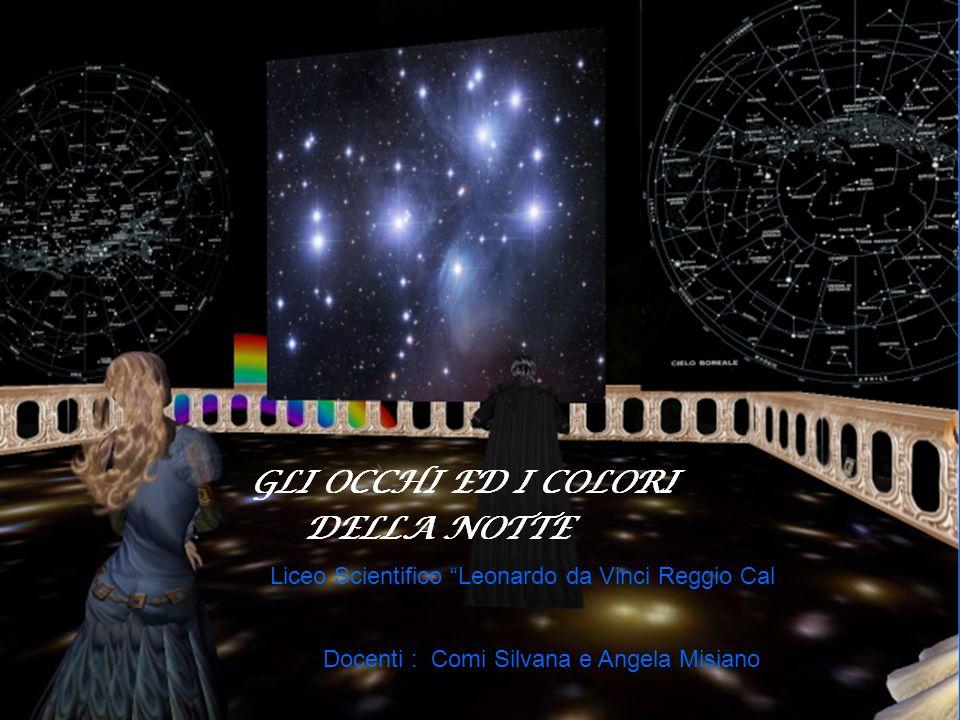 Liceo Scientifico Leonardo da Vinci Reggio Cal Docenti : Comi Silvana e Angela Misiano