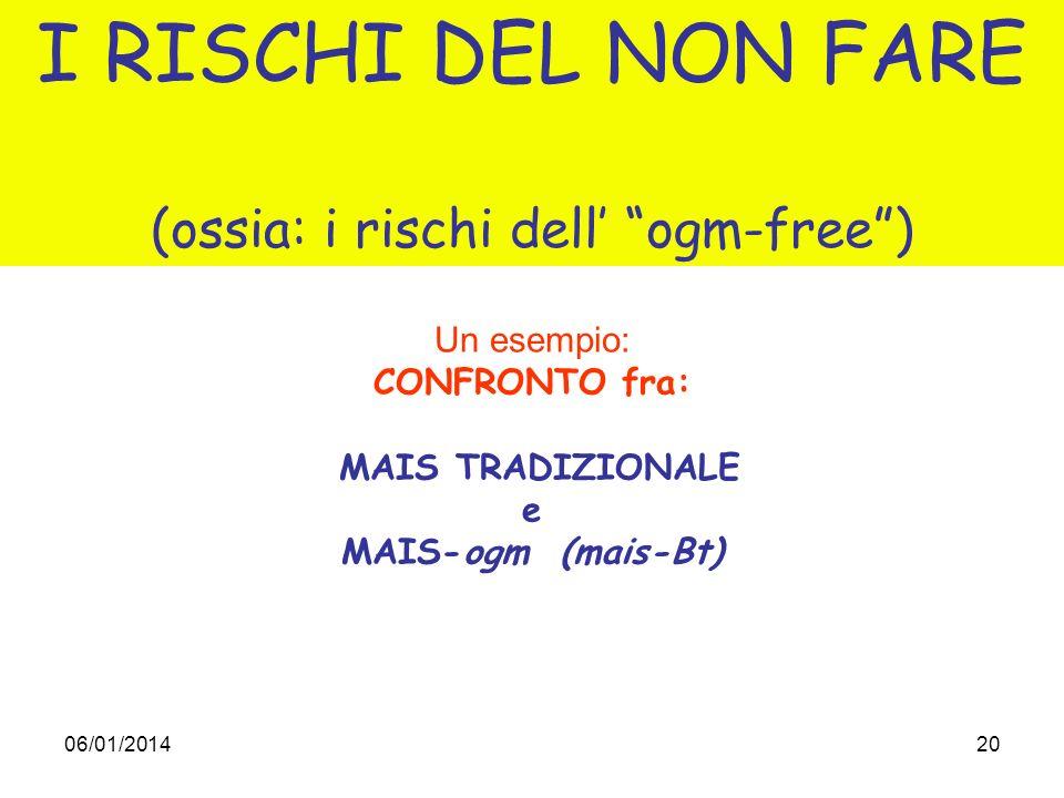 06/01/201420 I RISCHI DEL NON FARE (ossia: i rischi dell ogm-free) Un esempio: CONFRONTO fra: MAIS TRADIZIONALE e MAIS-ogm (mais-Bt)